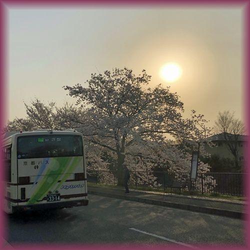 201904_kyoto24
