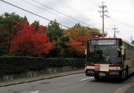 Kurama205
