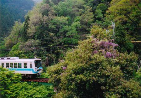 2007_wakaba04