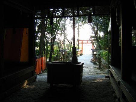 Kimigamo01