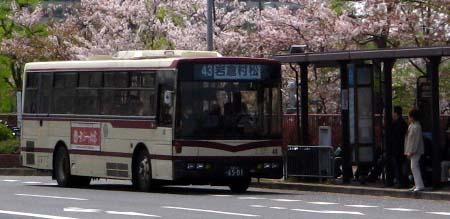 43keito01