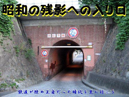 Yamashina02