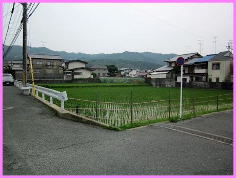 Syusyo02