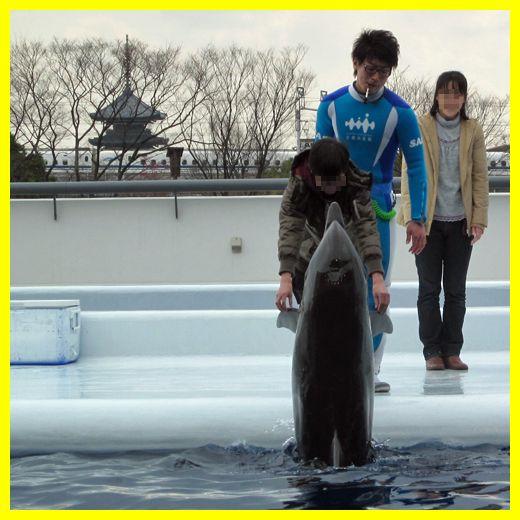 201203kyoto_aquarium08