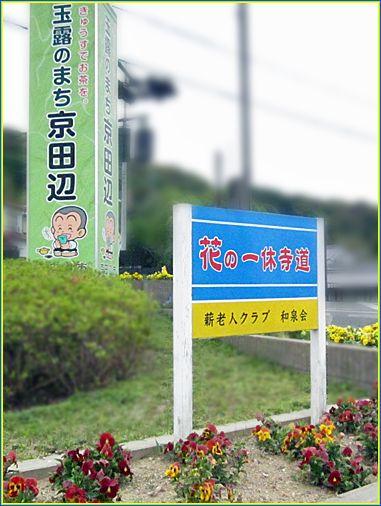 Kyotanabe08