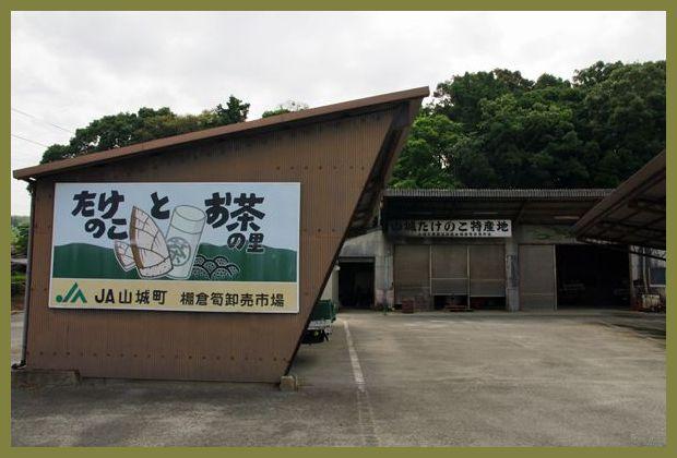201107yamashiro04
