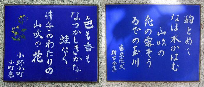 201107yamashiro15