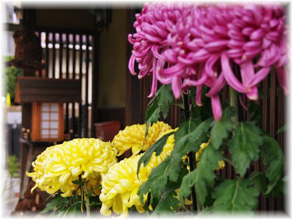 201211_hirakata08