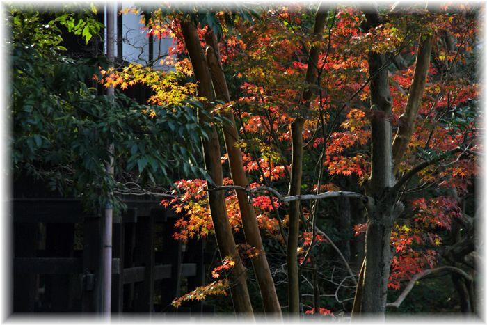 201211_yawata01