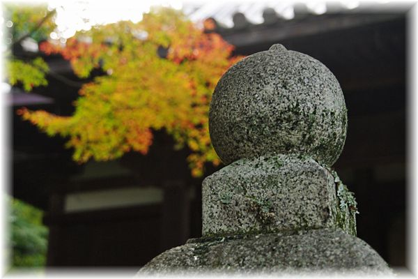 201211_yawata05