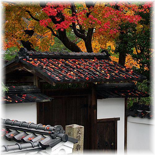 201211_2iwakura02