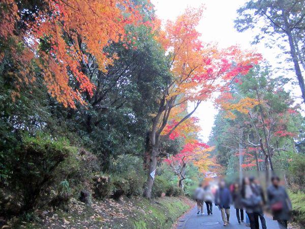 201211_4ichijyoji00