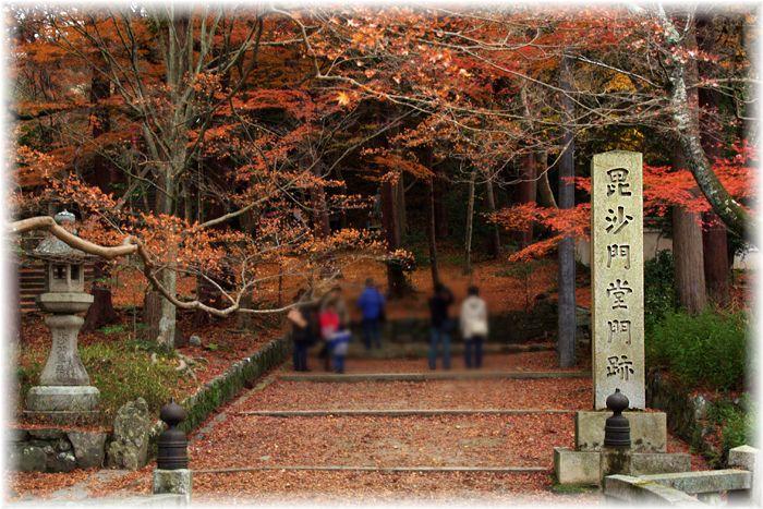 201212_1yamashina01