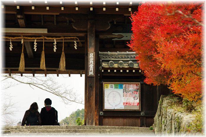 201212_1yamashina08