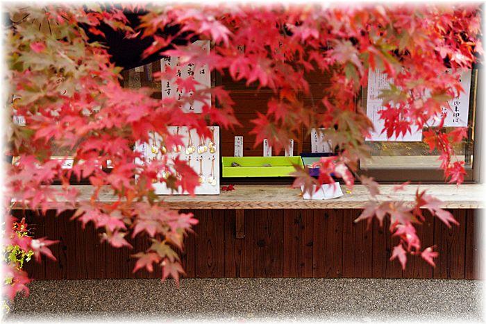201212_1yamashina10