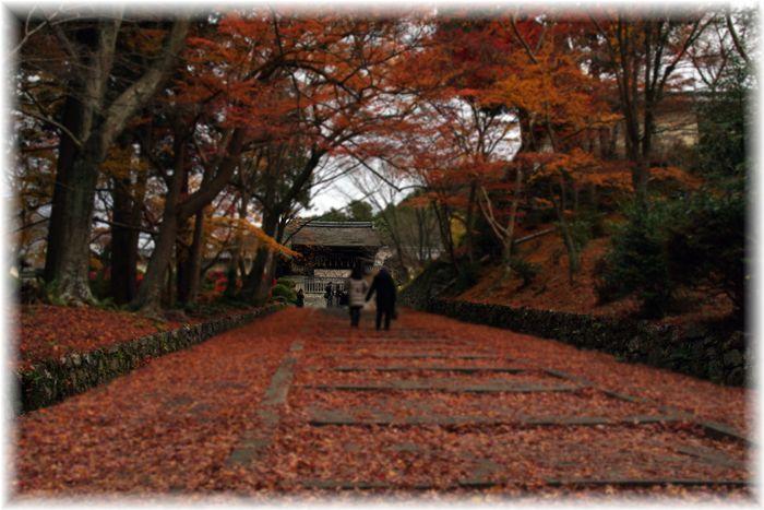 201212_1yamashina13