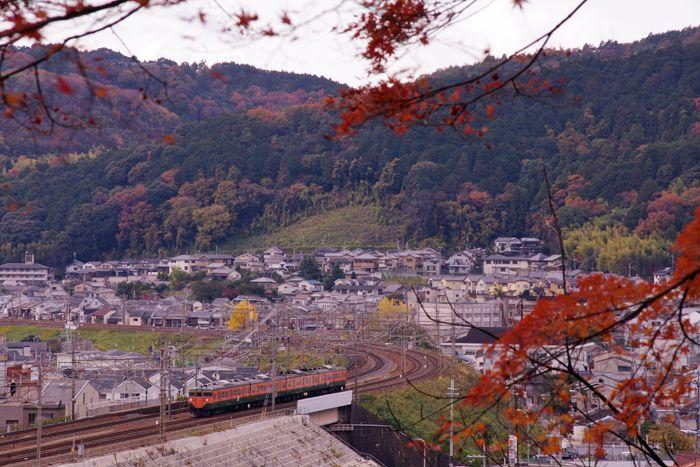Yamashina10