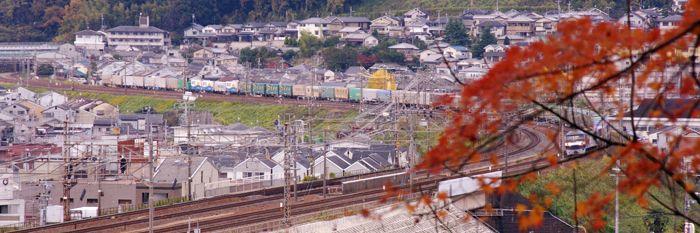 Yamashina12