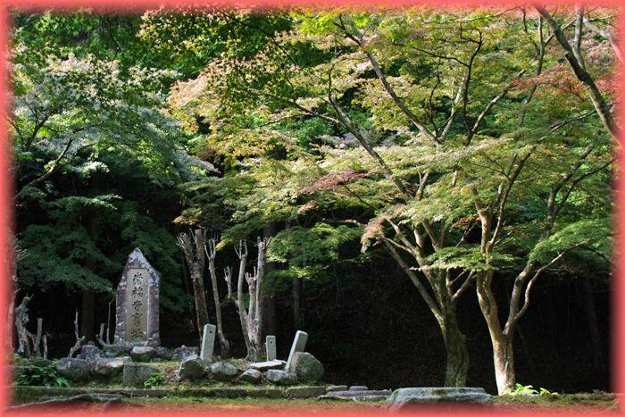 201311yamanaka05