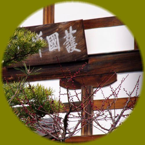 2014031daitokuji06