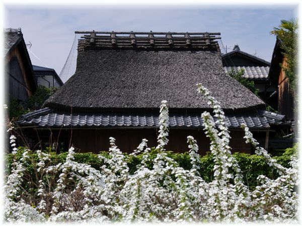 2014033_kamogawa03