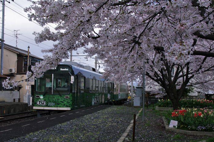 Ryouanji01