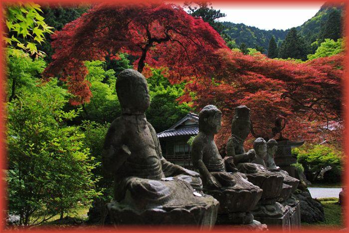 2014051_kochidani17