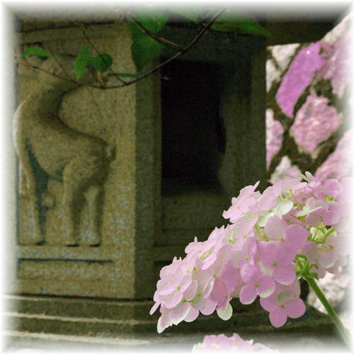 201406tetsugaku13