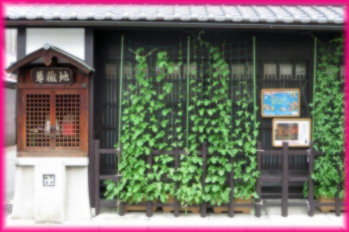 201407okazaki03