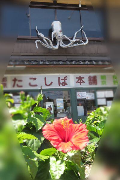 201407okazaki53