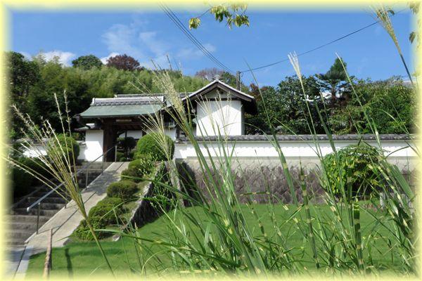 201408katagihara07