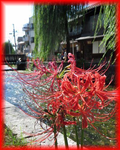 201409higashiyama14