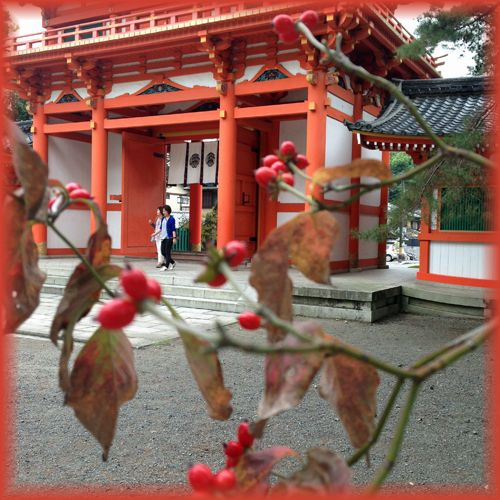 201410daitokuji01