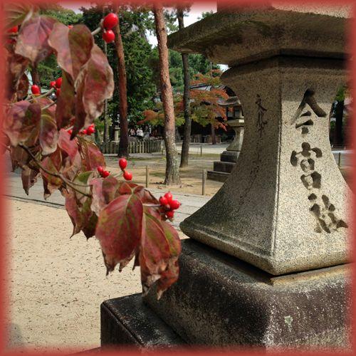 201410daitokuji02