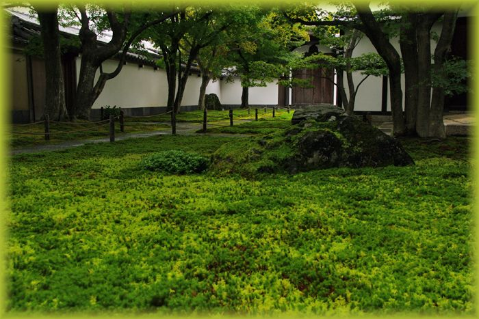 201410daitokuji19