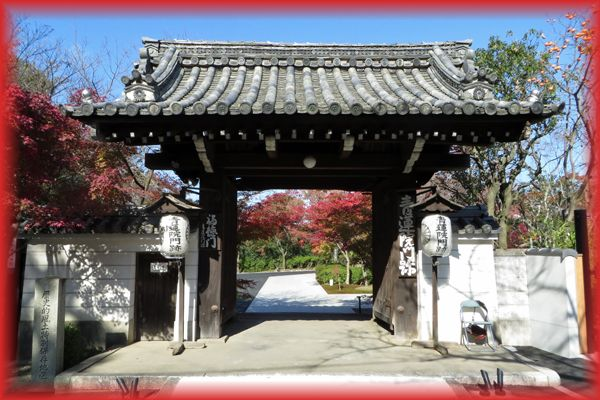 2014111_syogunzuka06