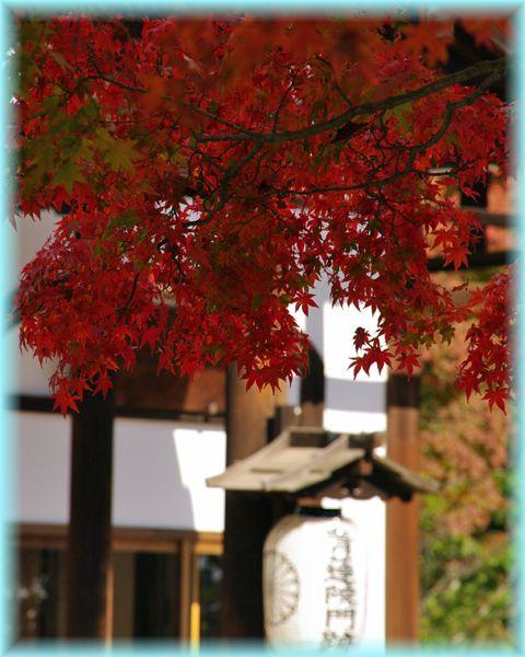 2014111_syogunzuka07