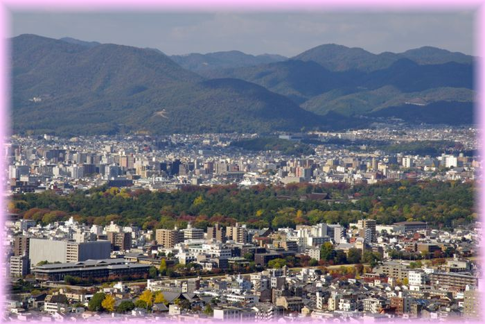 2014111_syogunzuka09