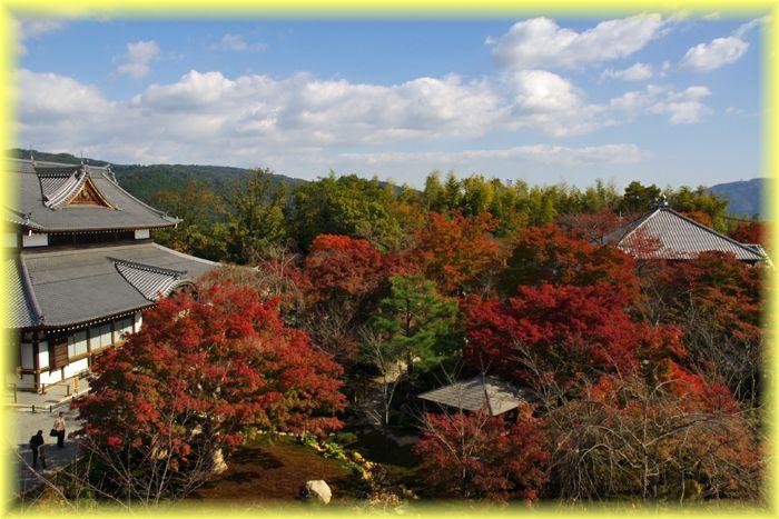 2014111_syogunzuka10