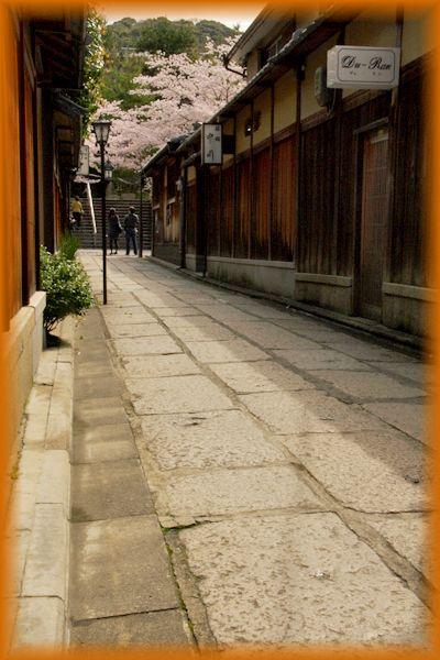 2014044gion_sakura02