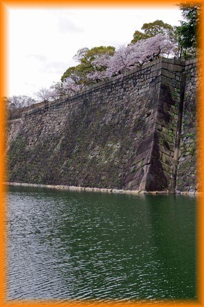 201404osaka_sakura2_08