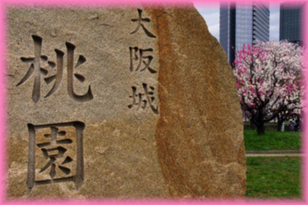201404osaka_sakura2_11