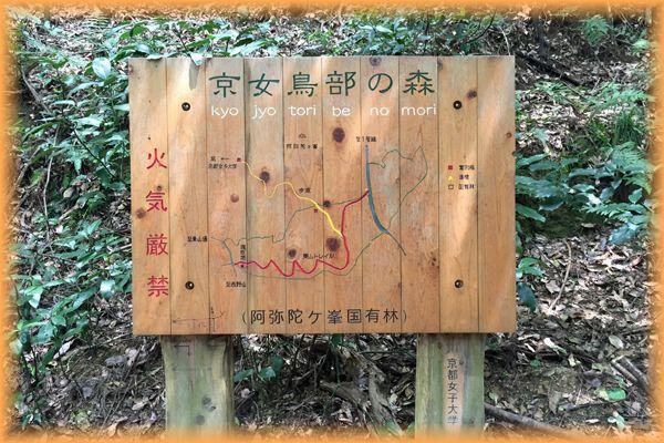 201508higashiyama05