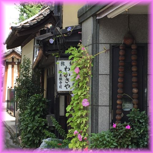 20150905_1honganji04
