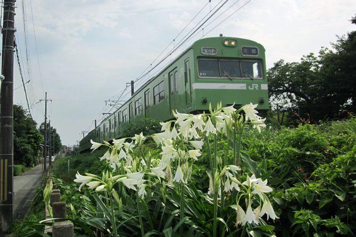 Momoyama10
