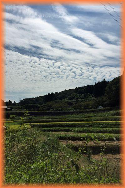 201509kura_nara14
