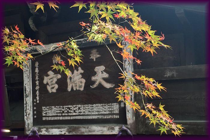 201511_1kitano01