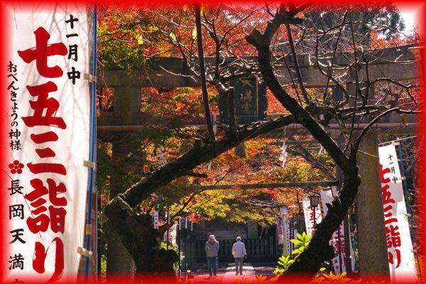 201511_3nagaokatenjin04