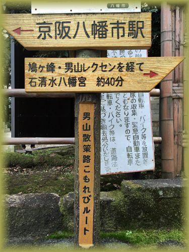 201511_1yahata01