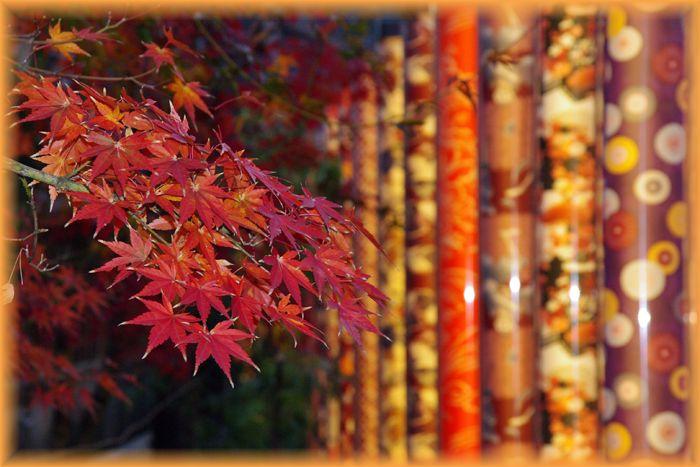 Arashiyama13